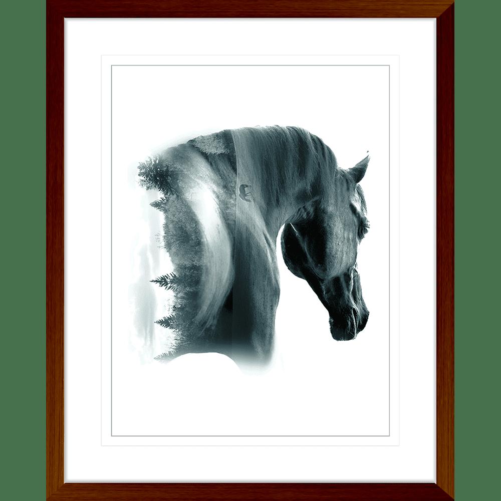Born to be Wild | Framed Art | Wall Art Gold Coast | Wallpaper | Innovate Interiors