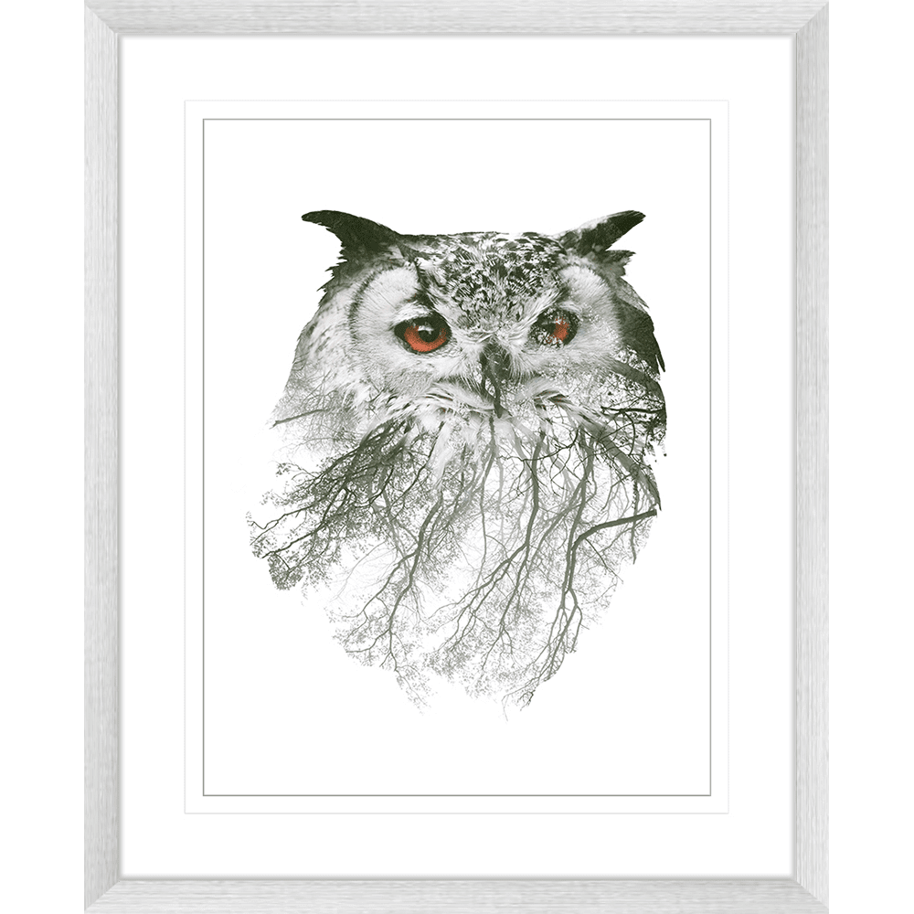 Born-to-be-WILD-Collection-02-Framed-Art-Print-BORN02-Silver