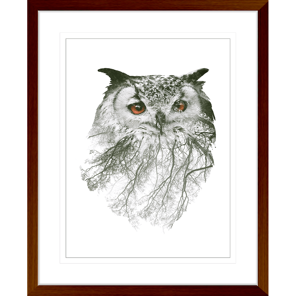Born-to-be-WILD-Collection-02-Framed-Art-Print-BORN02-Teak