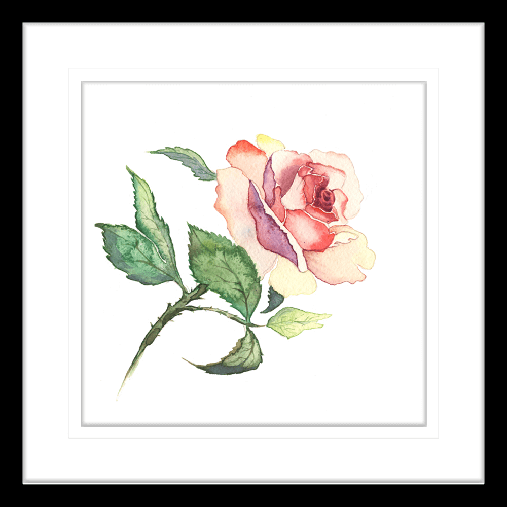 Botanicals-Collection-Framed-Art-Print-WB02-BLK