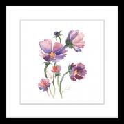 Botanicals-Collection-Framed-Art-Print-WB03-BLK