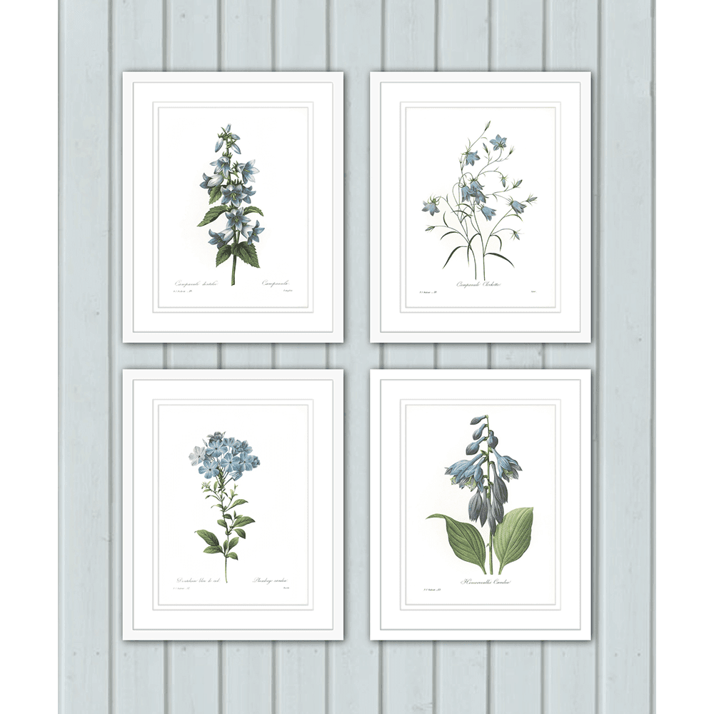 Botanicals-Collection-Styled-Room-BOT