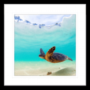 By-the-Seaside-Collection-05-Framed-Art-Print-BTS05-Blk