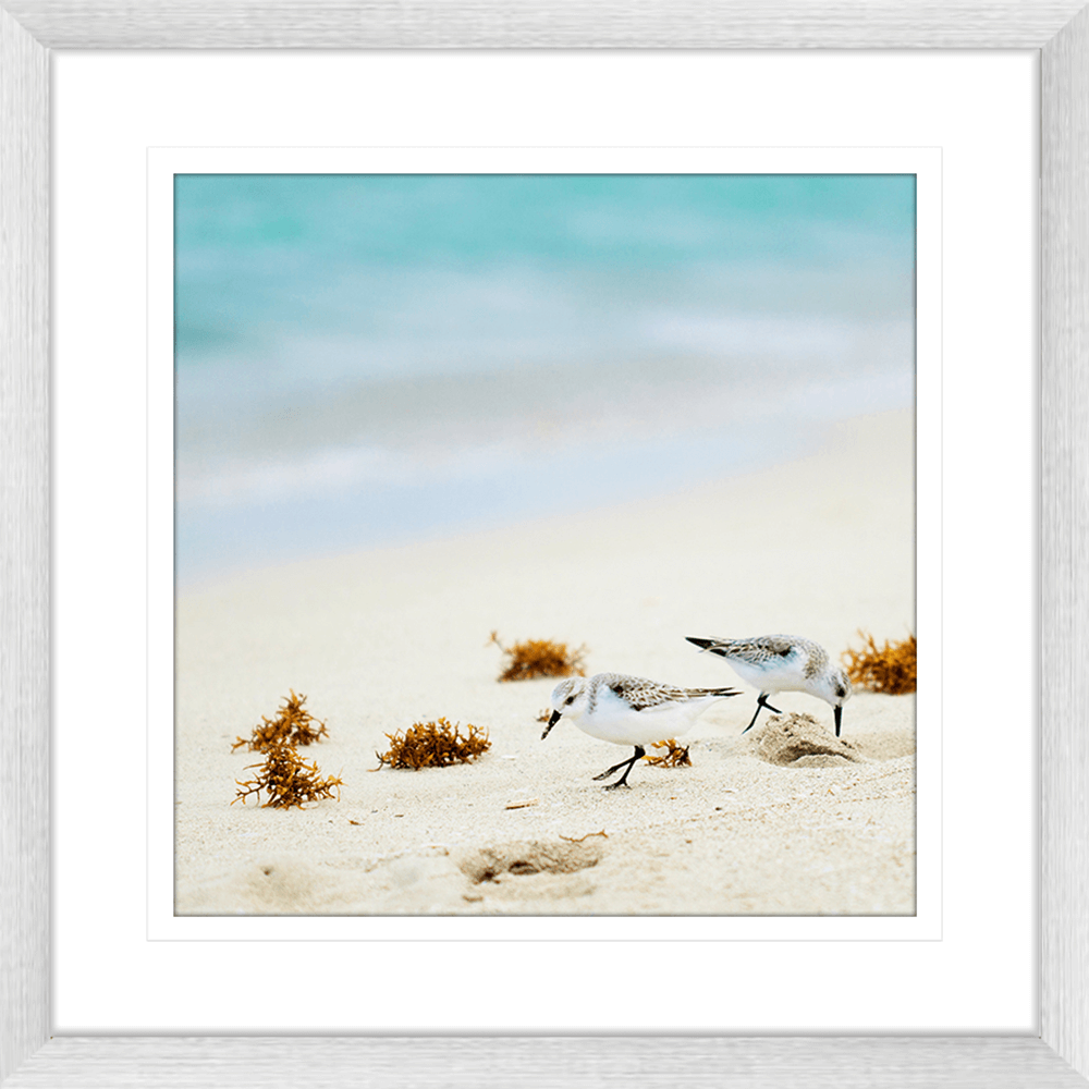 By-the-Seaside-Collection-06-Framed-Art-Print-BTS06-Sil
