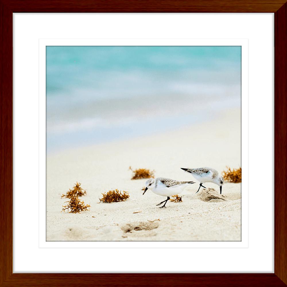 By-the-Seaside-Collection-06-Framed-Art-Print-BTS06-Teak