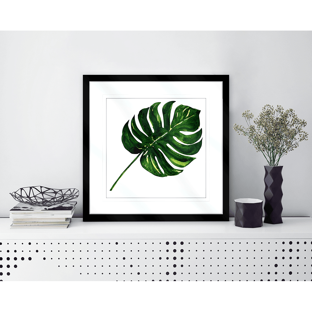 Plant Life & Floral