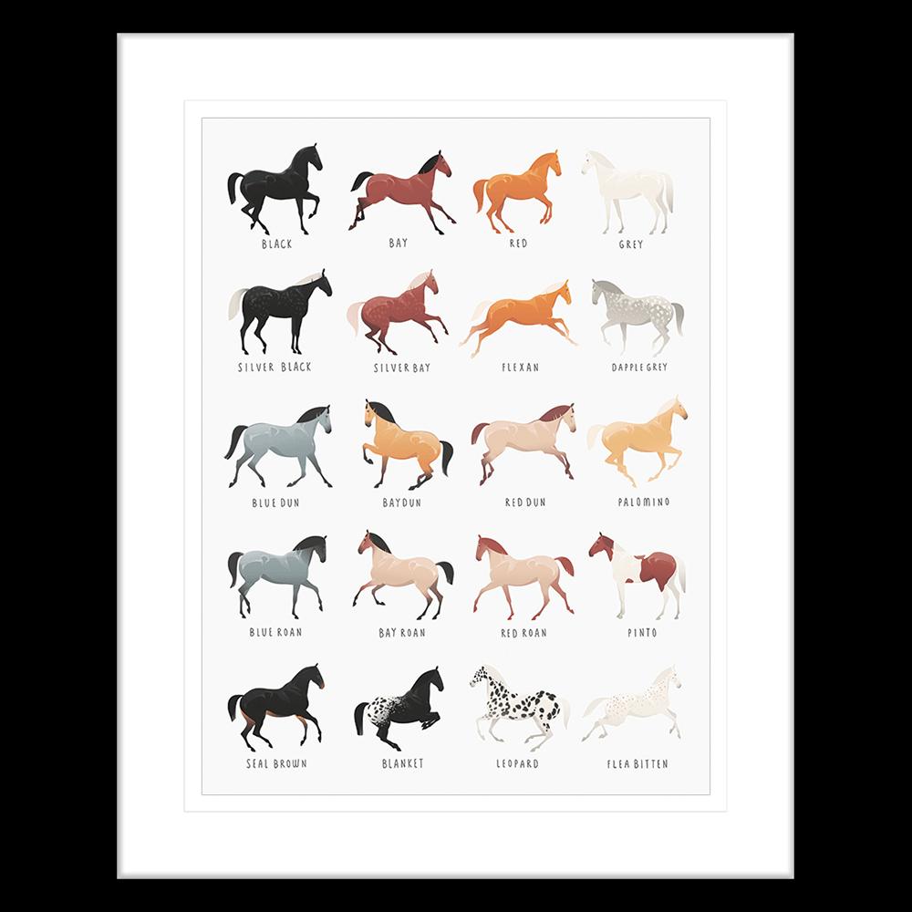 Equine Posters | Framed Art | Wall Art Gold Coast | Wallpaper | Innovate Interiors