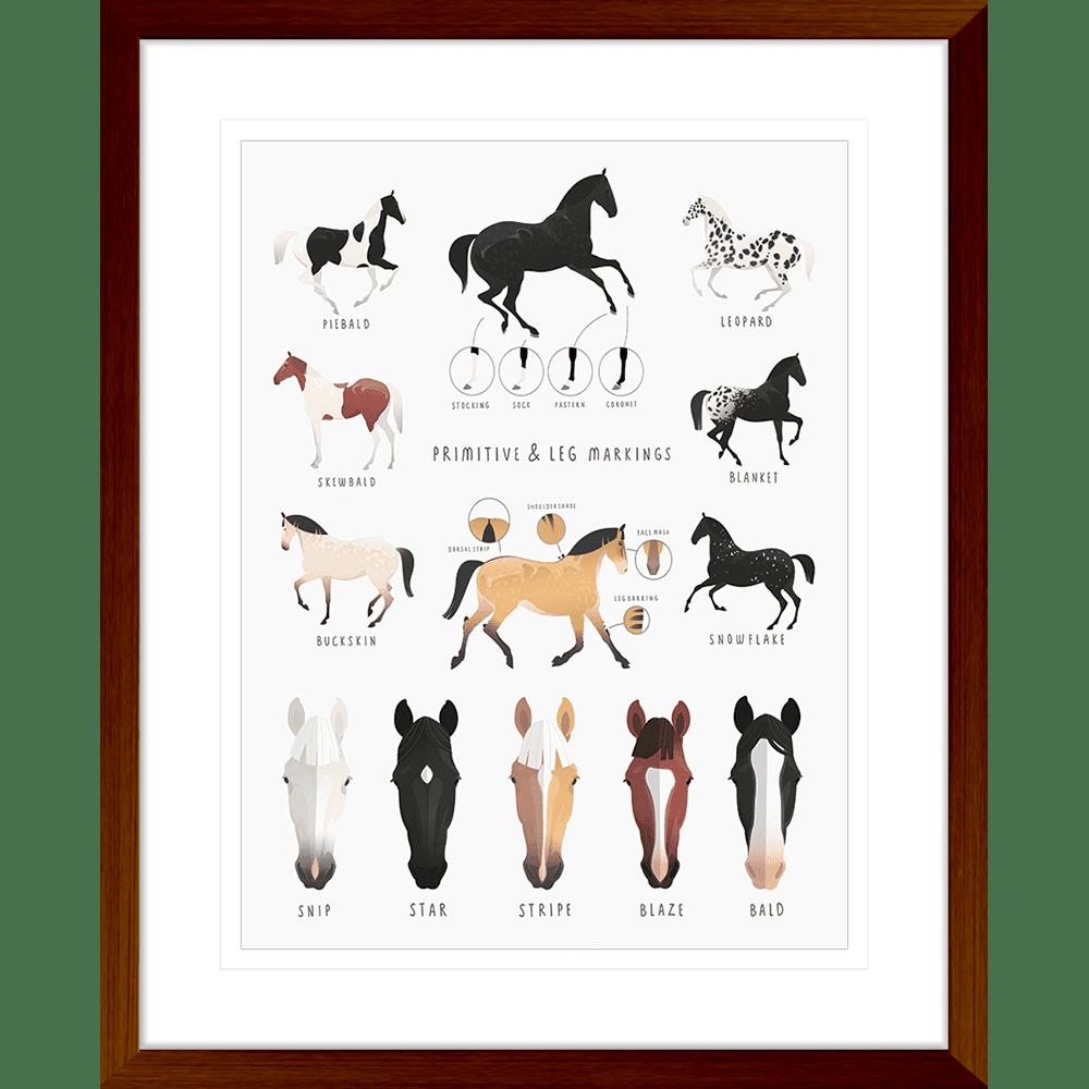 Everything Equine Collection #02 - Framed Art Print - EQ02 Teak
