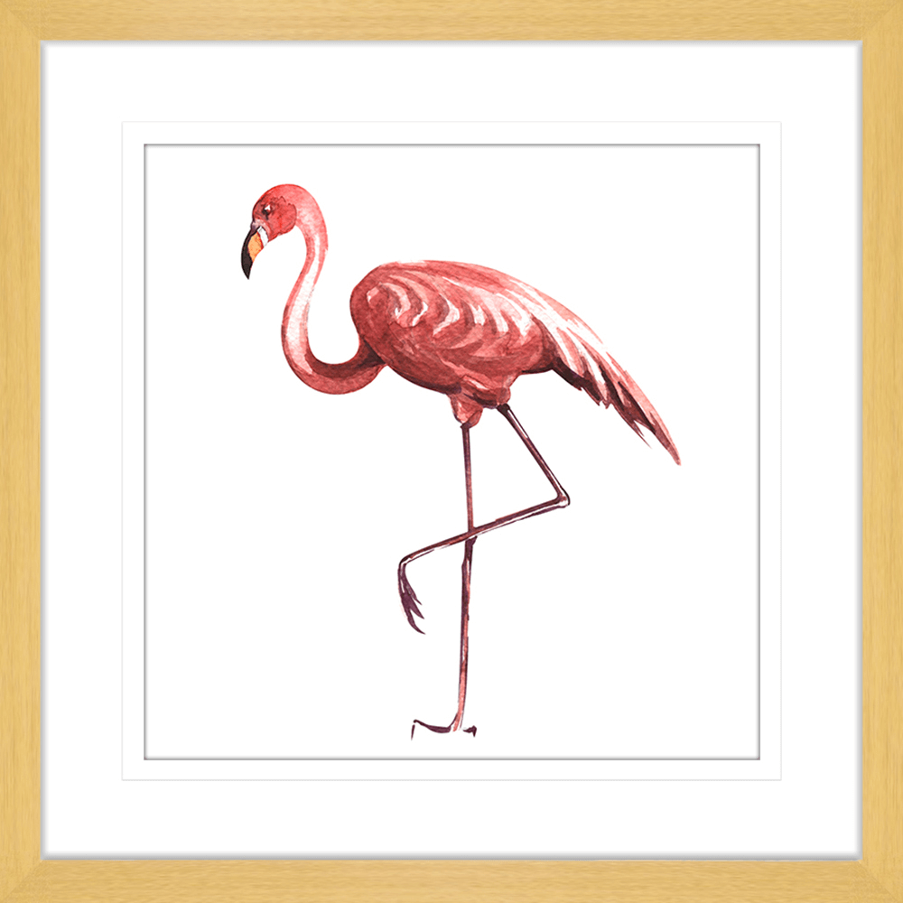 Flora & Fauna | Framed Art | Wall Art Gold Coast | Wallpaper | Innovate Interiors