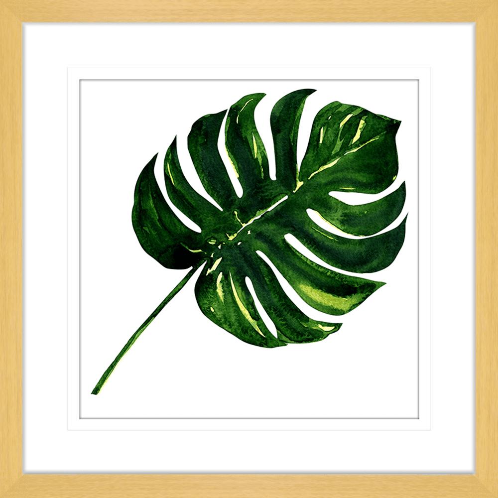 Flora & Fauna | Framed Art | Wall Art Gold Coast | Wallpaper | Innovate Interiors