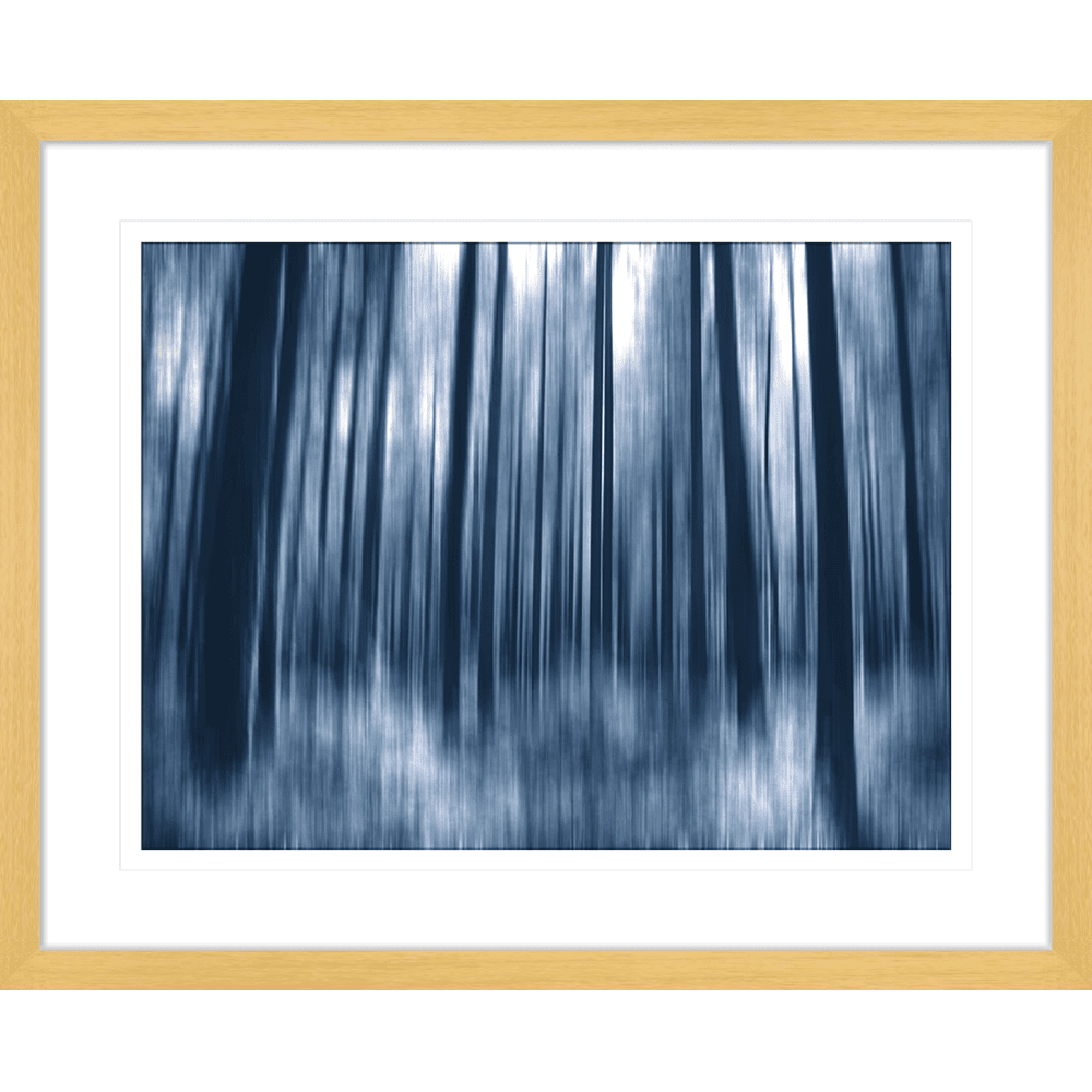 Forrest Fantasies | Framed Art | Wall Art Gold Coast | Wallpaper | Innovate Interiors