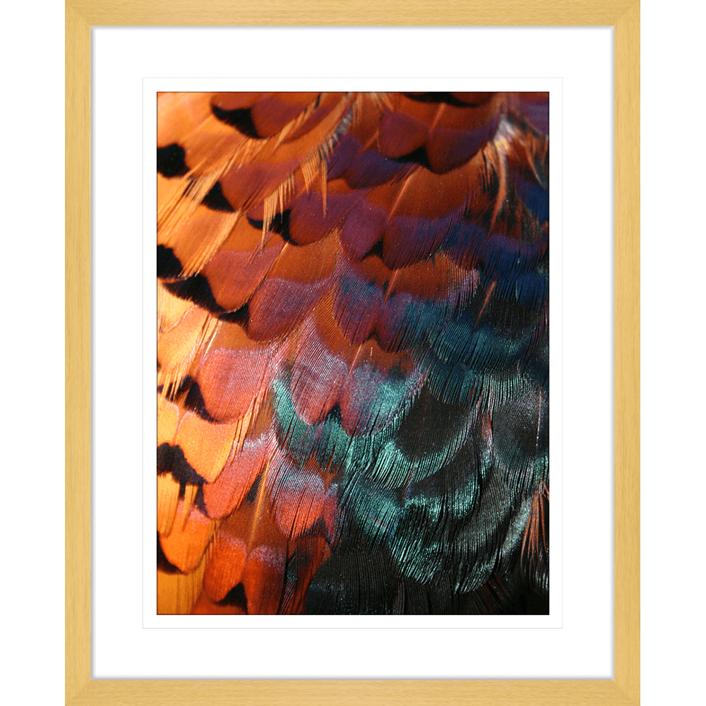 Gather & Nest | Framed Art | Wall Art Gold Coast | Wallpaper | Innovate Interiors