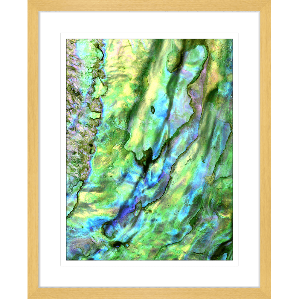 Pacific Paua | Framed Art | Wall Art Gold Coast | Wallpaper | Innovate Interiors