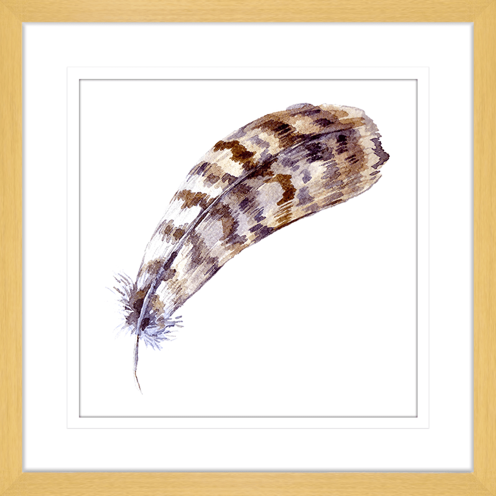 Quaint Feather | Framed Art | Wall Art Gold Coast | Wallpaper | Innovate Interiors