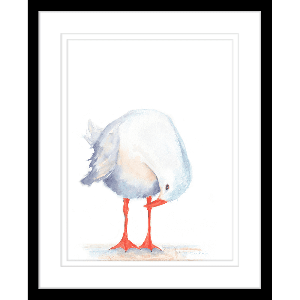 Watercolour Seagulls | Framed Art | Wall Art Gold Coast | Wallpaper | Innovate Interiors