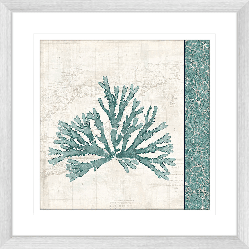 Pacific Sea Moss | Framed Art | Wall Art Gold Coast | Wallpaper | Innovate Interiors