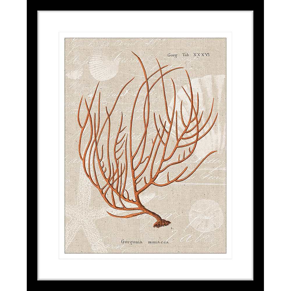 Flame Coral | Framed Art | Wall Art Gold Coast | Wallpaper | Innovate Interiors