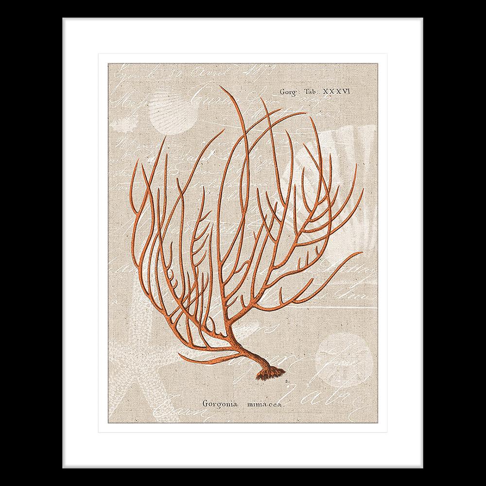 Flame Coral | Framed Art | Wall Art Gold Coast | Wallpaper | Innovate Interiors