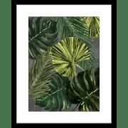 Jungle Fever   Framed Art   Wall Art Gold Coast   Wallpaper   Innovate Interiors