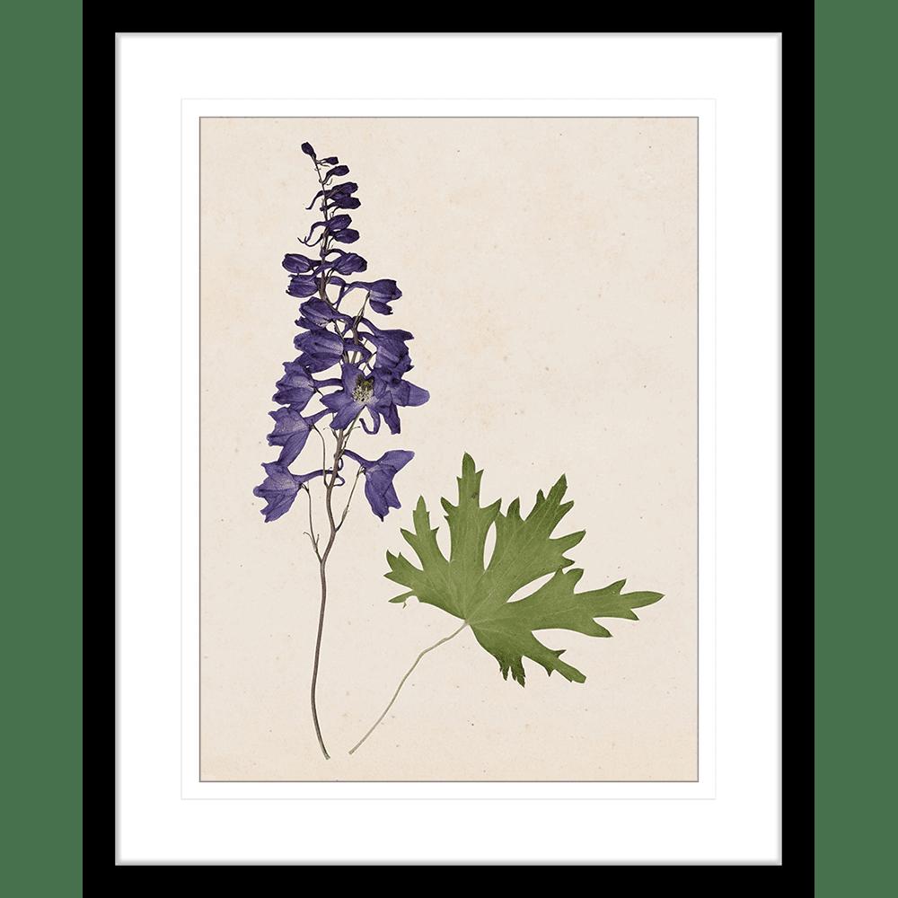 Les Fleurs | Framed Art | Wall Art Gold Coast | Wallpaper | Innovate Interiors