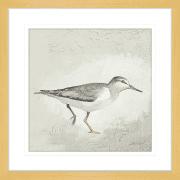 Sea Birds | Framed Art | Wall Art Gold Coast | Wallpaper | Innovate Interiors