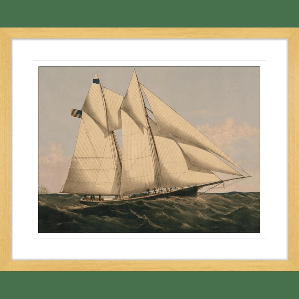 342661--600 ratio .67 The Yacht Oak