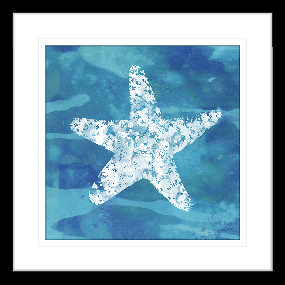Starfish Coastal Cov | Framed Art | Wall Art Gold Coast | Wallpaper | Innovate Interiors