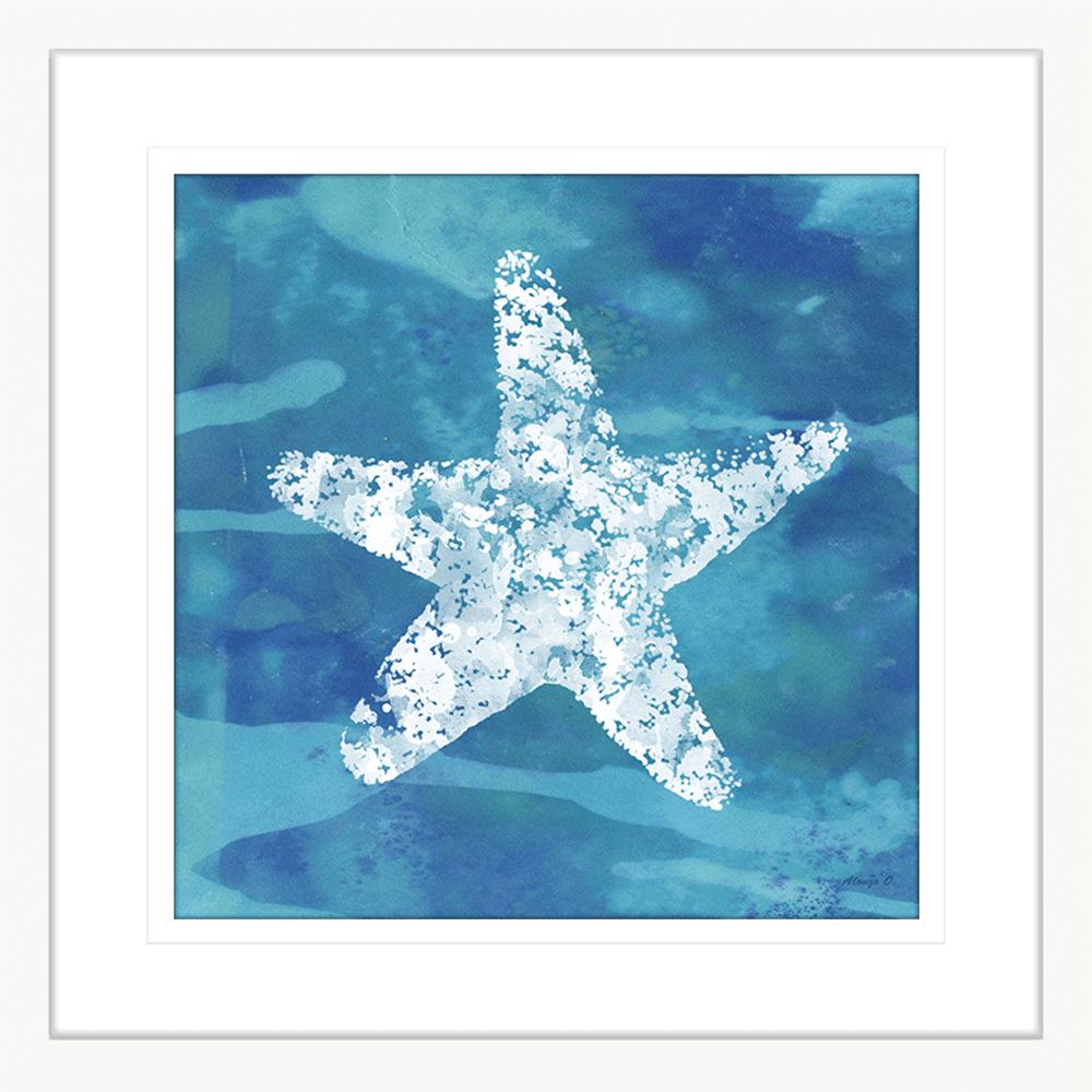 Starfish Coastal Cov | Framed Art | Wall Art Gold Coast | Wallpaper | Innovate Interiors