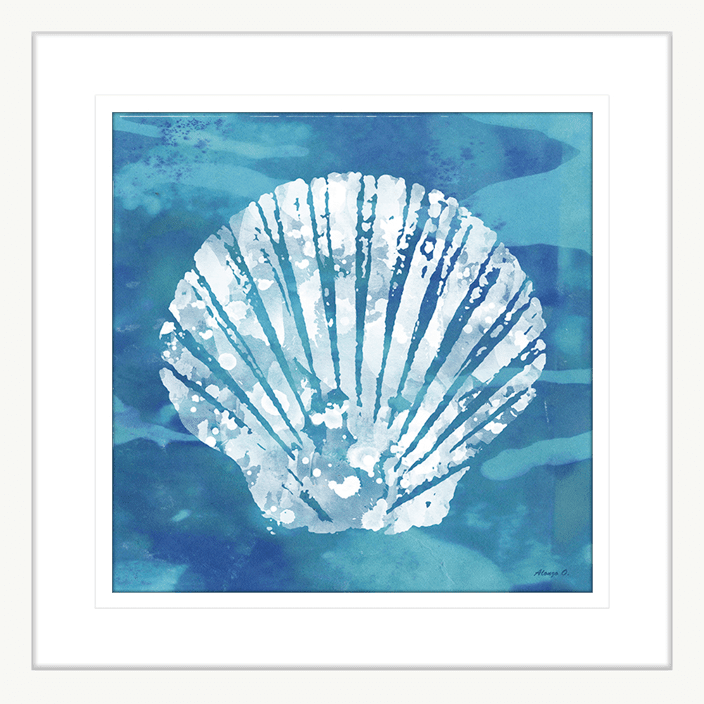 Seashell Coastal Cove | Framed Art | Wall Art Gold Coast | Wallpaper | Innovate Interiors