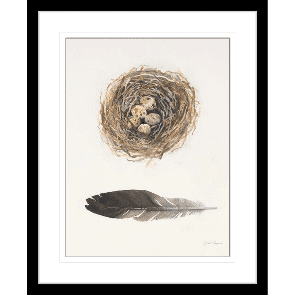 'Nest' Field Study | Framed Art | Wall Art Gold Coast | Wallpaper | Innovate Interiors