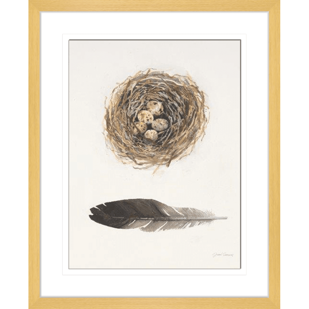 'Nest' Field Study | Framed Art | Wall Art Gold Coast | Wallpaper | Innovate Interiors
