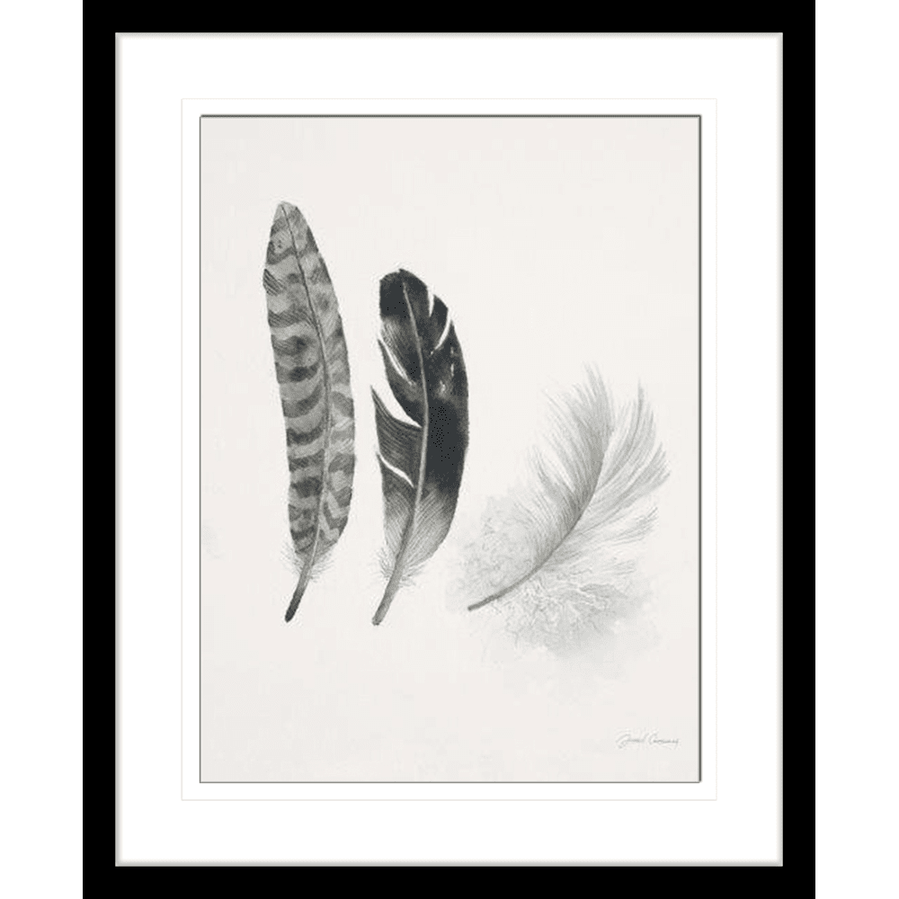 'Feather' Field Study | Framed Art | Wall Art Gold Coast | Wallpaper | Innovate Interiors