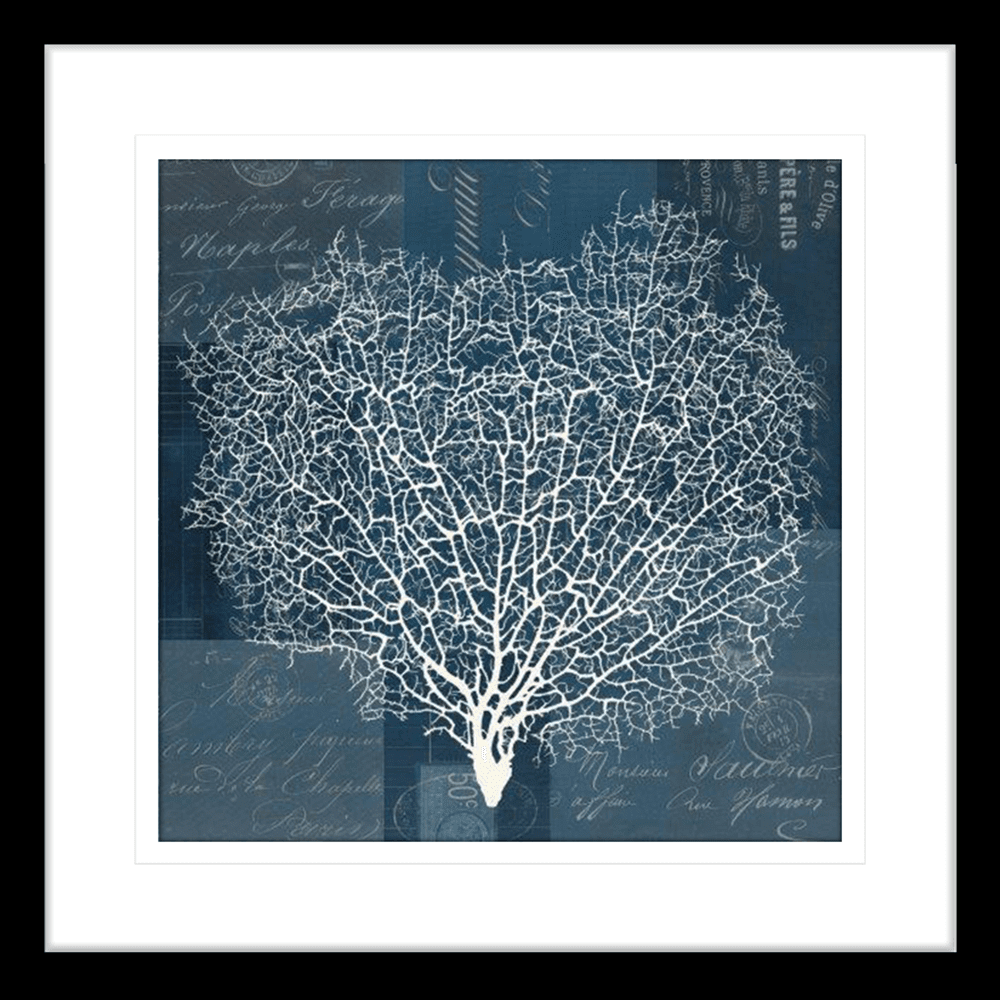 'Document' Sea Fan | Framed Art | Wall Art Gold Coast | Wallpaper | Innovate Interiors