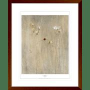 Vanilla Bloom   Framed Art   Wall Art Gold Coast   Wallpaper   Innovate Interiors