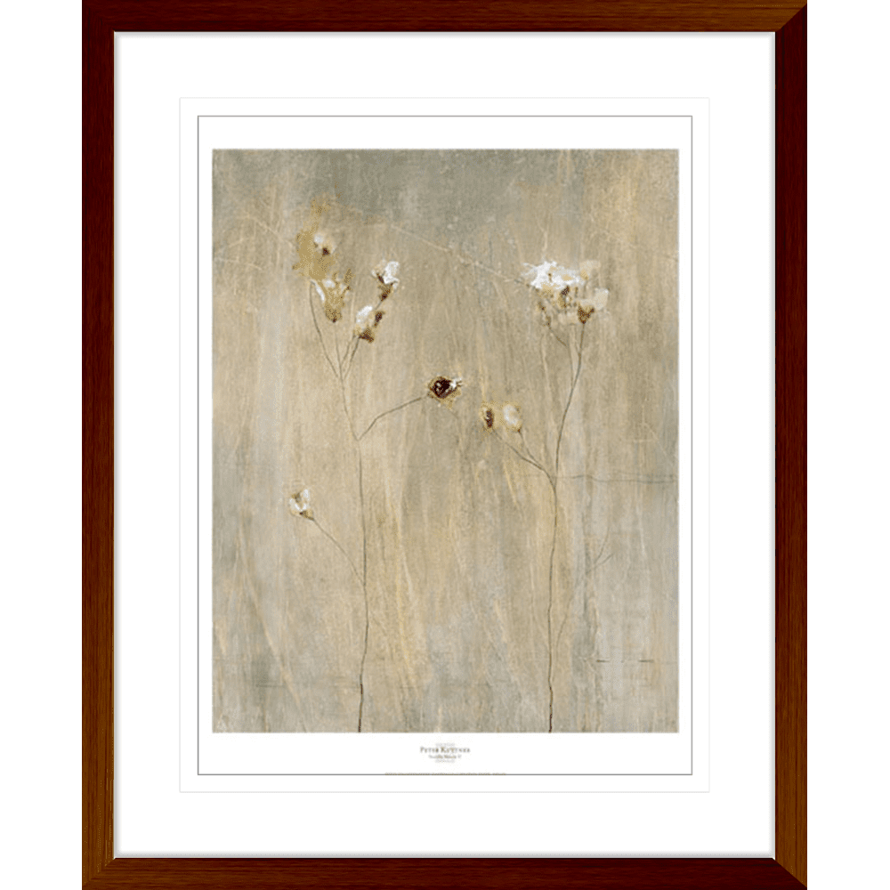 Vanilla Bloom | Framed Art | Wall Art Gold Coast | Wallpaper | Innovate Interiors