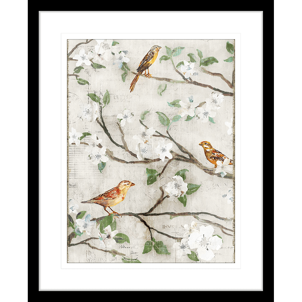Songs of Blossoms | Framed Art | Wall Art Gold Coast | Wallpaper | Innovate Interiors