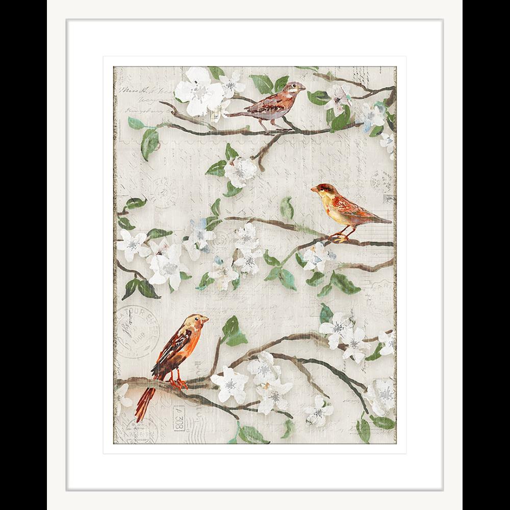 Songs of Blossoms | Framed Art | Wall Art Gold Coast | Wallpaper | Innovate Interiors