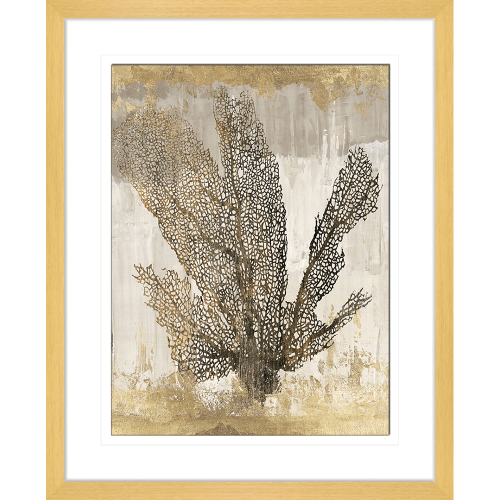 Coral Splendor | Framed Art | Wall Art Gold Coast | Wallpaper | Innovate Interiors