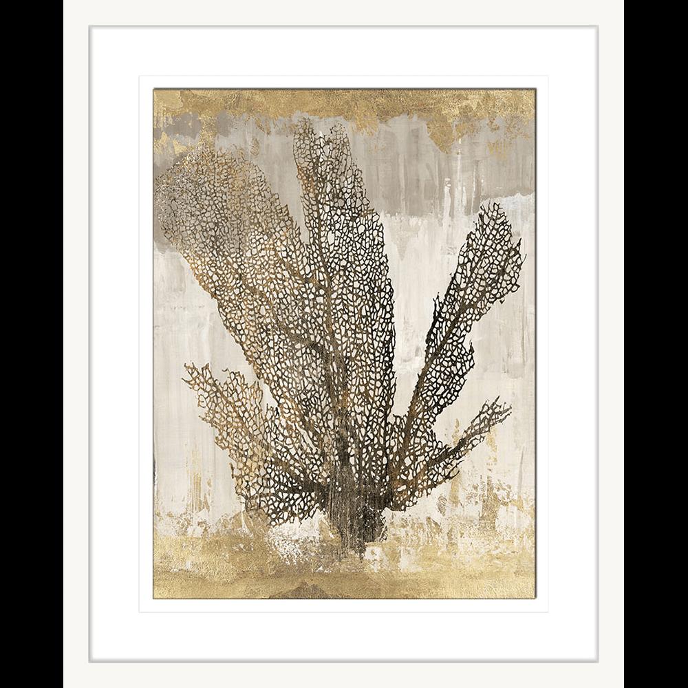 WL103-A ratio 1.33 Coral Splendor I White 2