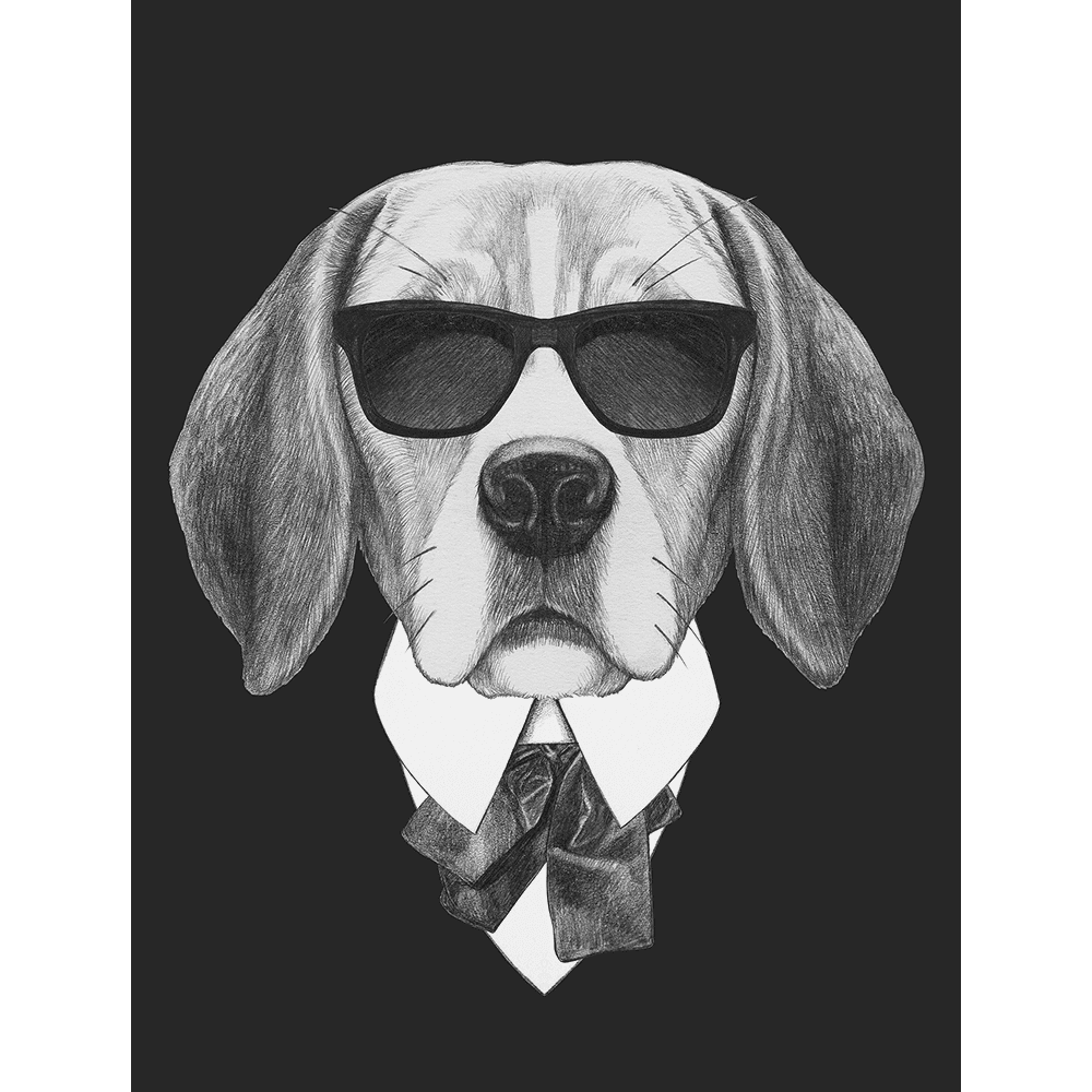 Agent Ruff Collection - AGENT01 - Stretched Canvas & Paper Print