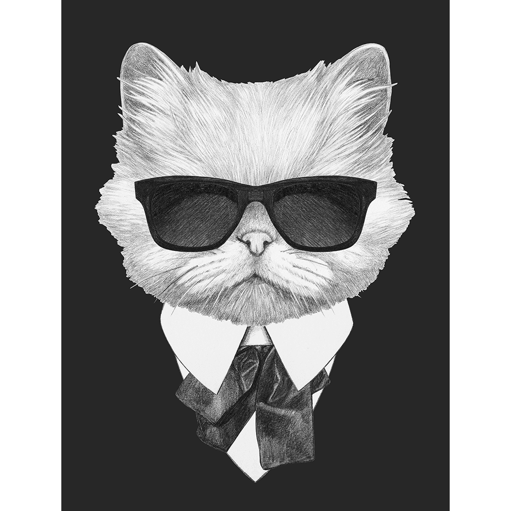 Agent Ruff Collection - AGENT02 - Stretched Canvas & Paper Print