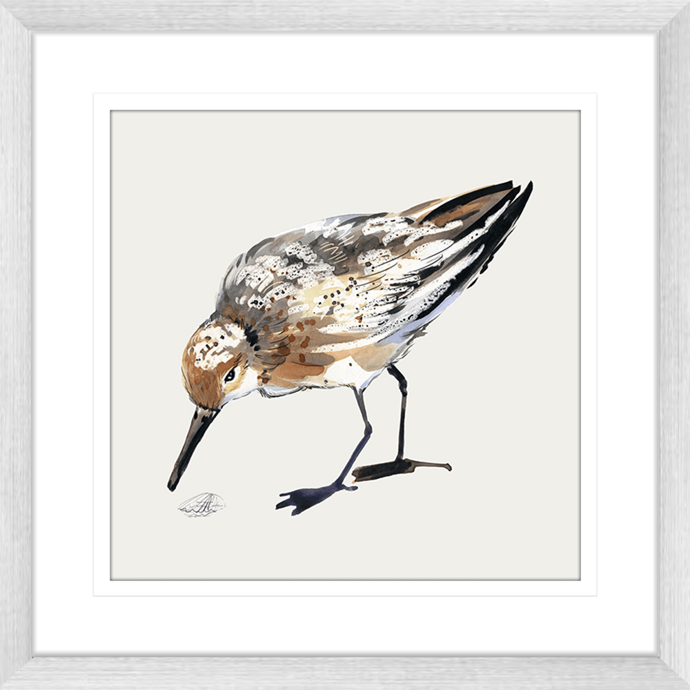 Sandpiper Cove Collection - SAND01 - Framed Art Print Silver