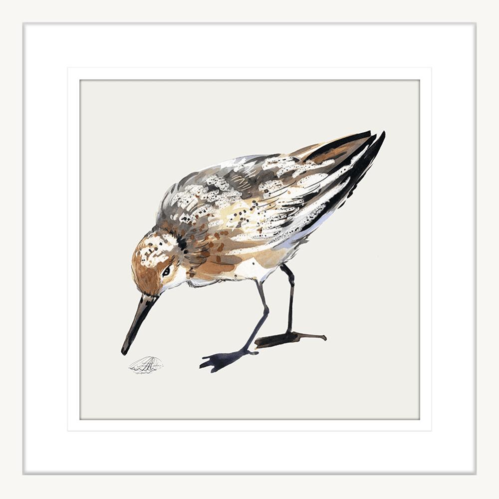 Sandpiper Cove Collection - SAND01 - Framed Art Print White