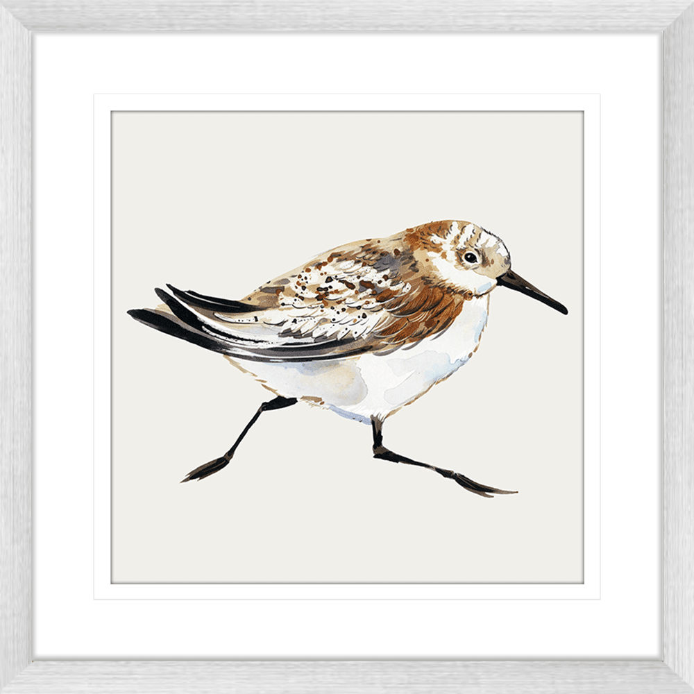 Sandpiper Cove Collection - SAND02 - Framed Art Print Silver