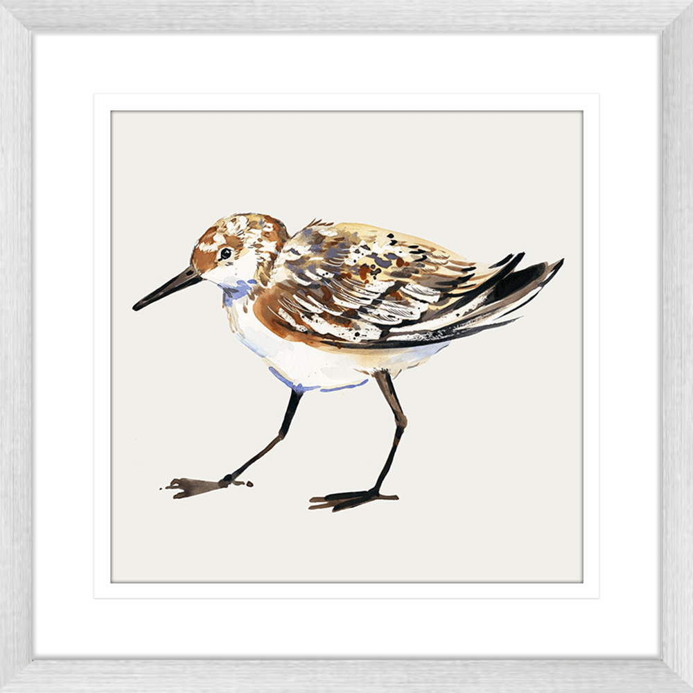 Sandpiper Cove Collection - SAND03 - Framed Art Print Silver