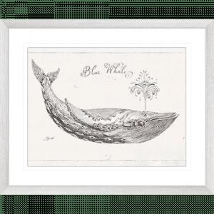 Underwater Life 01 | Silver Framed Artwork