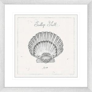 Underwater Life 04 | Silver Framed Artwork