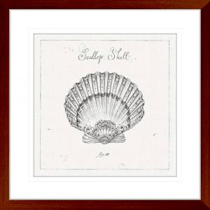 Underwater Life 04 | Teak Framed Artwork