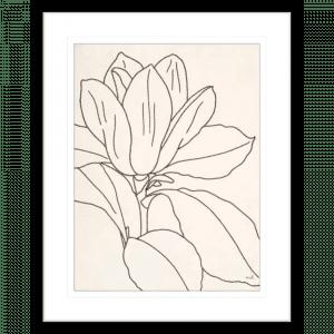 'Magnolia' Line Drawing 02 | Black Framed Artwork