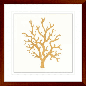 24 Karat Sealife 01 | Teak Framed Artwork